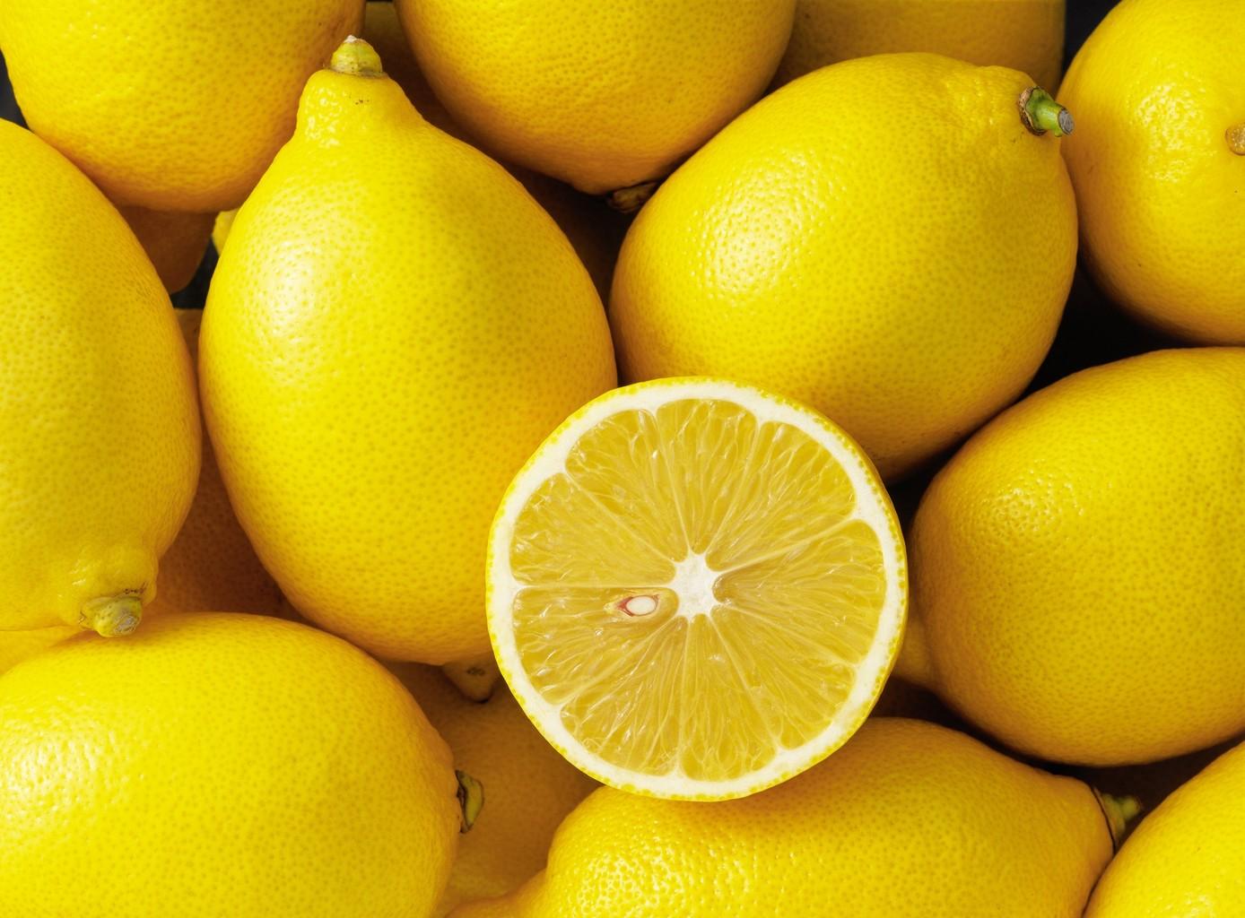 Le citron ce fruit qui nous offre une autre perspective sur la vie - Quand cueillir les citrons ...