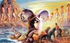 La Réincarnation dans l'hindouisme