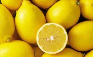 Le citron : ce fruit qui nous offre une autre perspective sur la vie