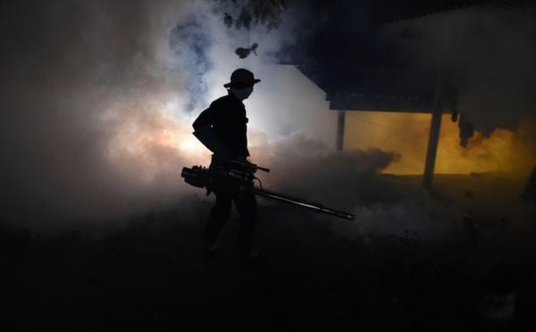 Dengue : le Sri Lanka envoie l'armée contre les moustiques